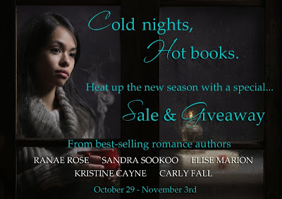 Cold Nights, Hot Books #SALE and #Giveaway